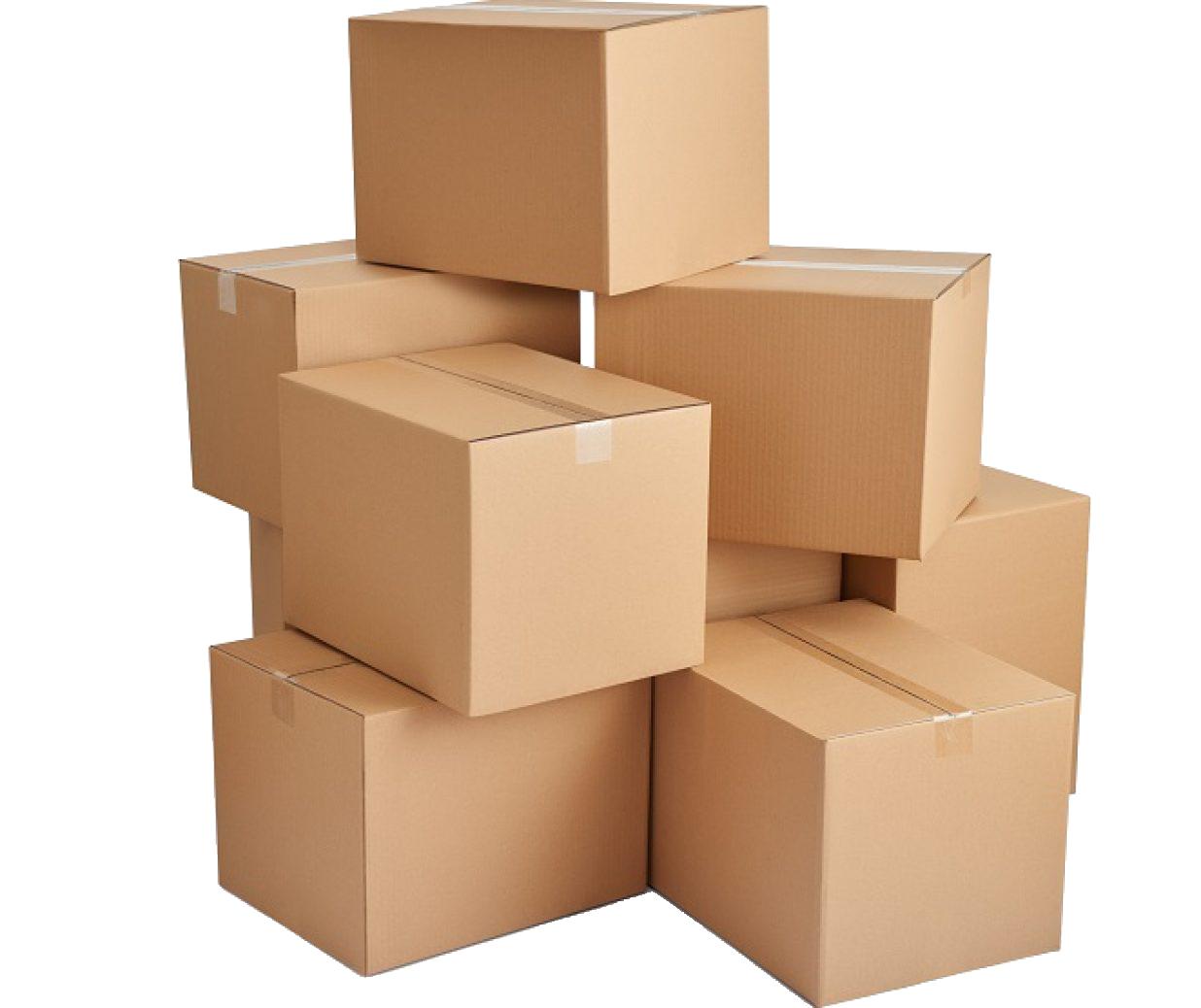 Cargo Nepal